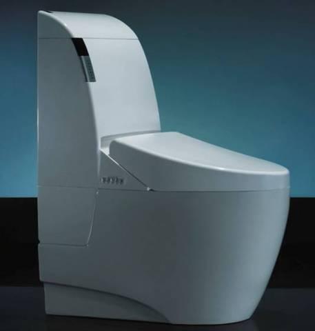 Toilet Bowl Singapore (6).jpg
