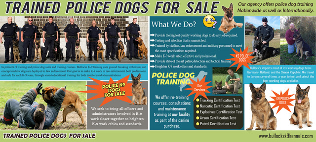 Trained Police Dogs For Sale