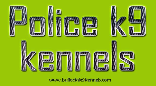 Police K9s For Sale