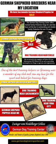 German Shepherd Breeders Near My Location
